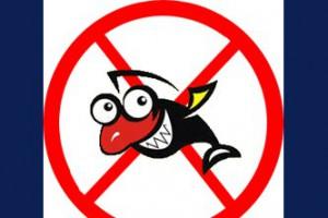 Ограничения лова рыбы в период нереста начинаются с 1 апреля