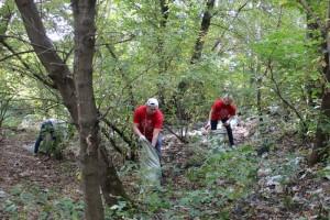 Чистый берег – заслуга волонтеров