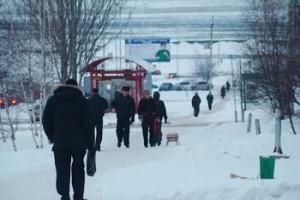 8 ноября в Белгородской области ожидается ветер, мокрый снег и гололёд