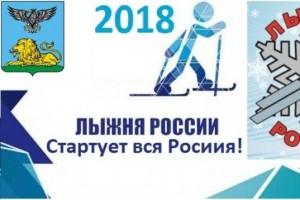 Старооскольцы, пора подавать заявки на «Лыжню России»!