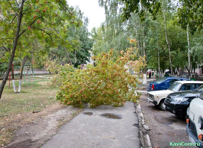 http://www.kavicom.ru/uploads/sub/7a810667_DSC_0079.jpg
