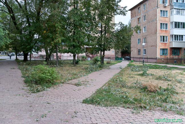 http://www.kavicom.ru/uploads/sub/7ecba2c1_DSC_0061.jpg