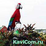 http://www.kavicom.ru/uploads/sub/dd41bb5a_iz_1_564.jpg