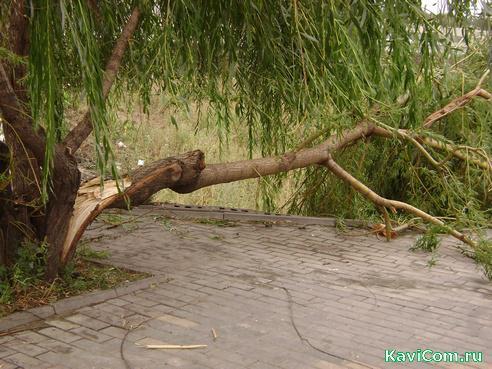 http://www.kavicom.ru/uploads/sub/f4603aa3_uragan1.jpg